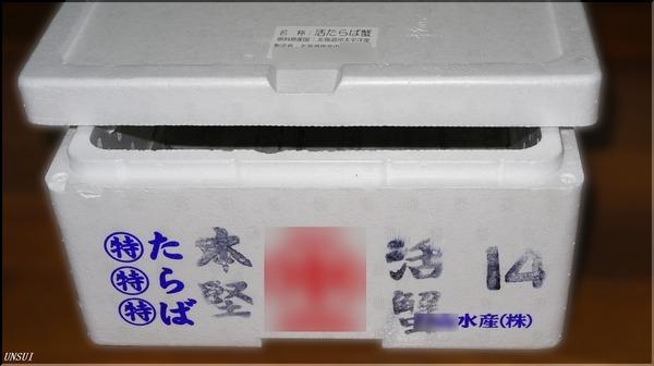 DSC03411-1-1
