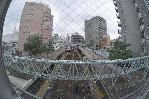 ohyama2003