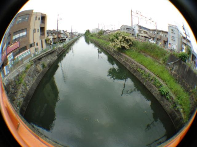 fushimiinari1201