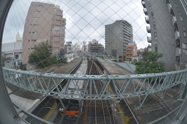 ohyama2002