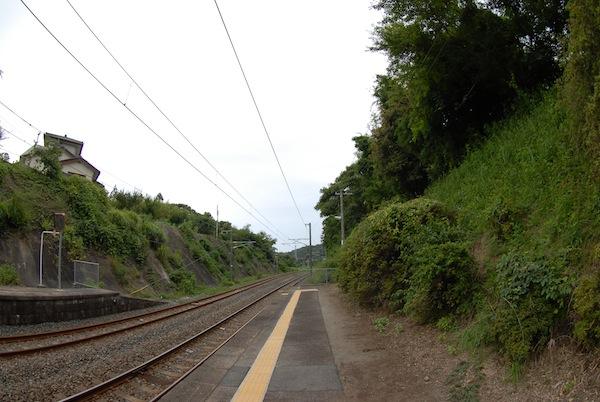 suetsugi8204
