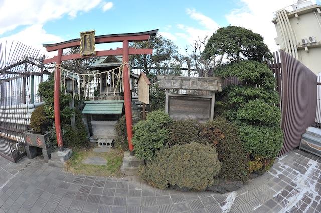 kawagoe4601