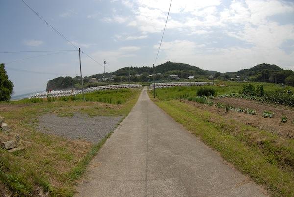 suetsugi3402