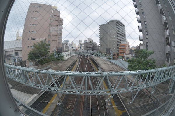 ohyama2005