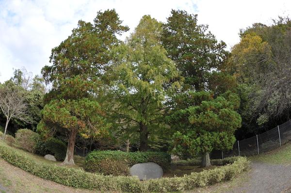 yumoto1801