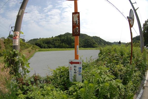 suetsugi7301