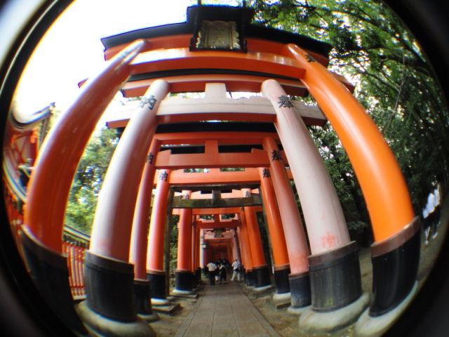 fushimiinari0701