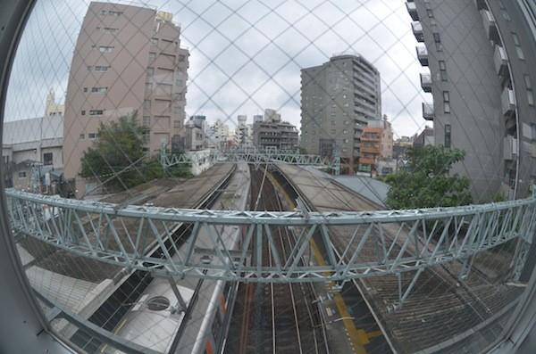 ohyama2001