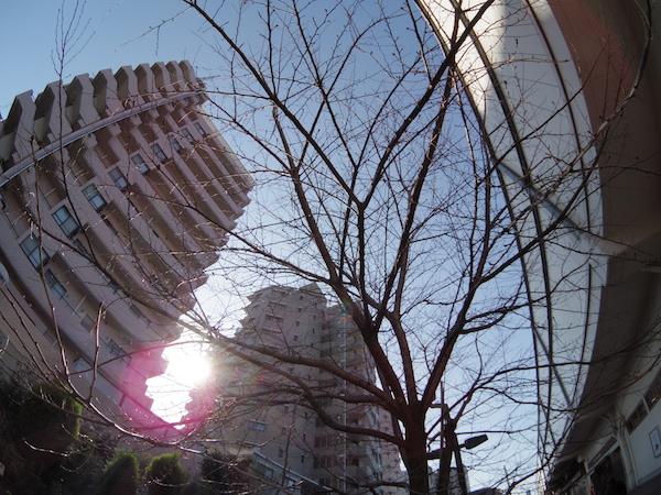 nakamurabashi0401