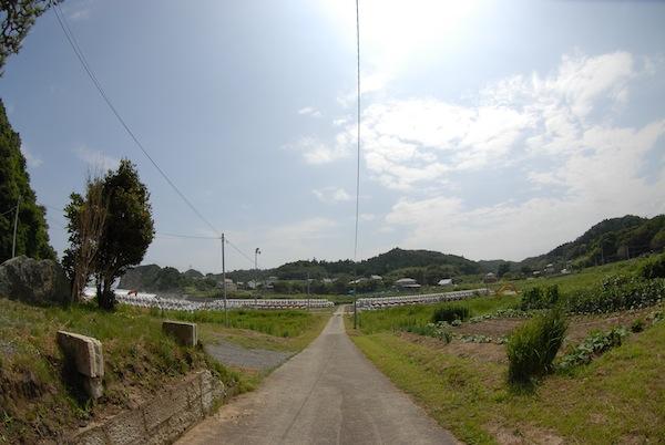 suetsugi3401