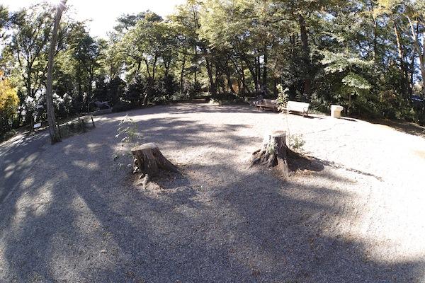 inokashirakoen5601
