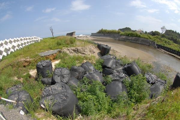 suetsugi3901