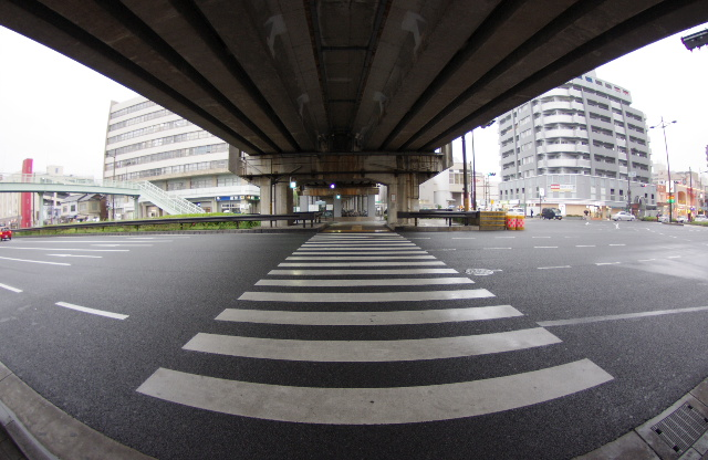 kyoto1501