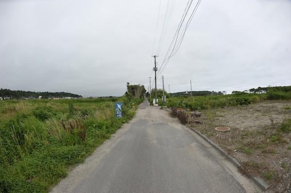 hirono2001