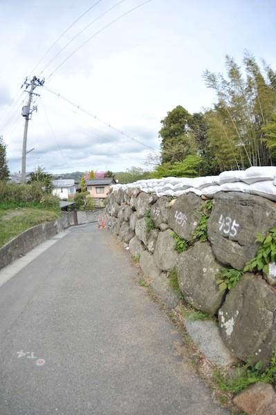 iwaki5503