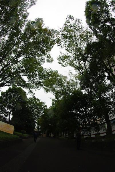 hamamatsucho3101