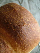 パンのひび