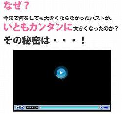 バストアップ石塚04