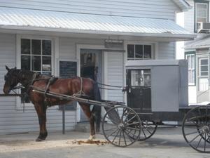 Amish bugy