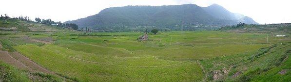 25_Panorama