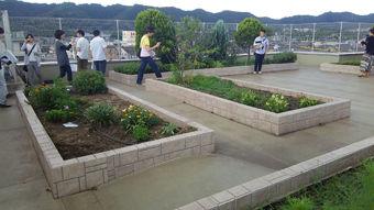 08_屋上庭園
