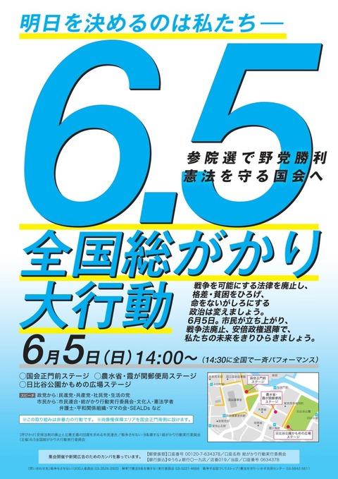 5国会前集会チラシ-724x1024