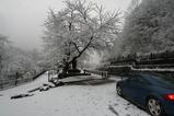 雪の荘川1