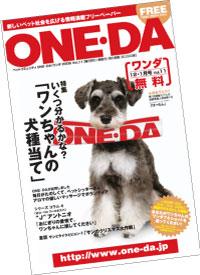 oneda12