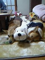 ウランナナ抱き枕