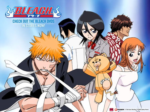 bleach_episodes_1-52_307_1024