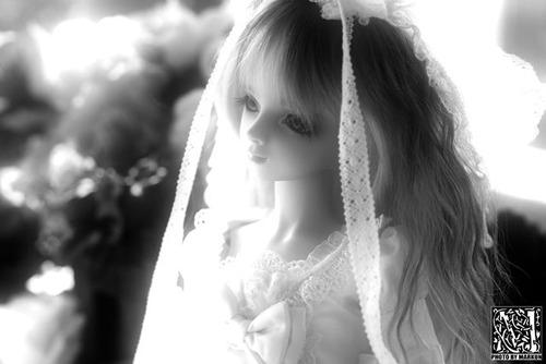 IMG_1447_M-f9fff