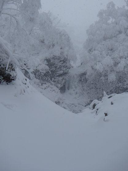 ジョーゴ沢右俣大滝