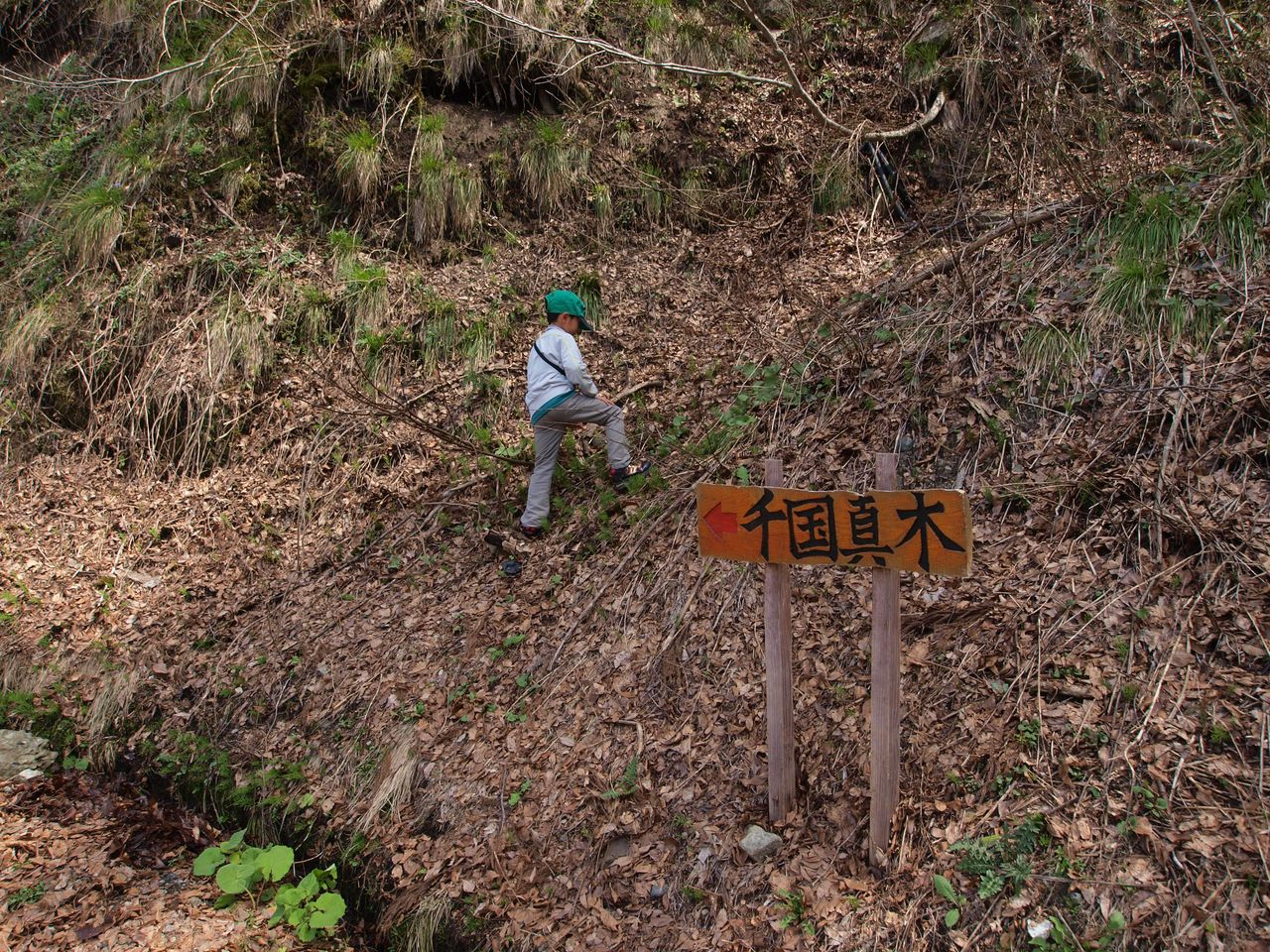 祭りに出かけた小1女児が行方不明 道路にサンダルが残される 長野・小谷村 [無断転載禁止]©2ch.net [545512288]->画像>54枚