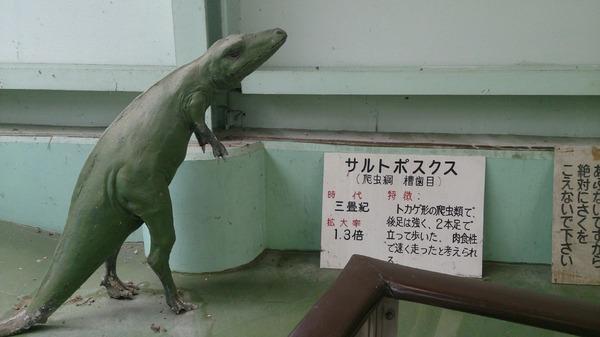 ジャパンスネークセンター7