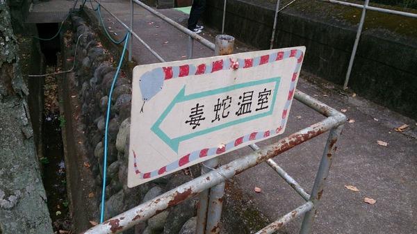 ジャパンスネークセンター13