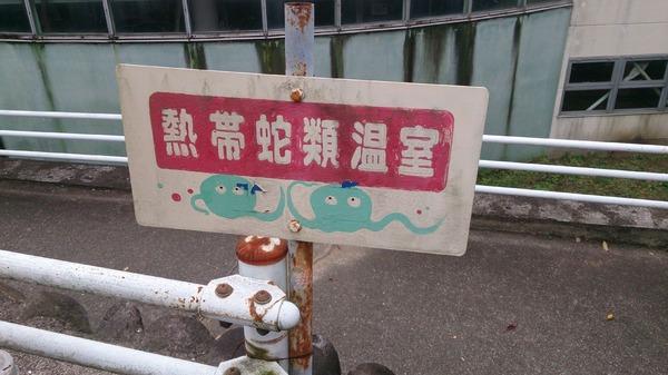 ジャパンスネークセンター2