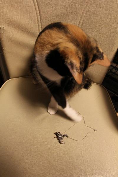 猫とサソリのネックレス