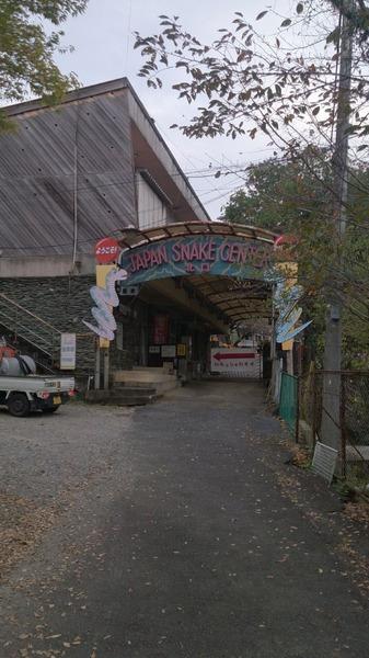 ジャパンスネークセンター1