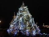 クリスマスナイト11