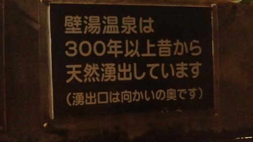 P9081048
