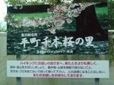 千本桜の里看板