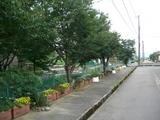 梅雨入りの定点撮影090610