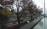 冬の雨定点撮影携帯カメラ