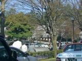 桜兼六園入り口交差点