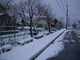 定点撮影積雪090113