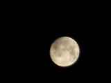 撮れた中秋の名月