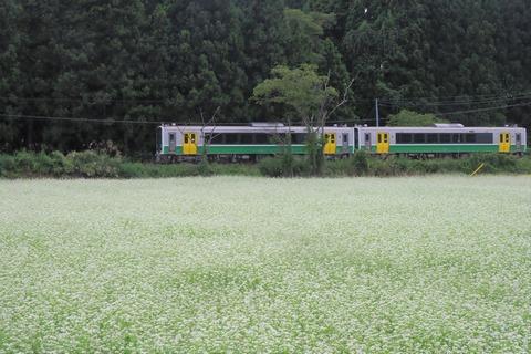 P9200159 (2)