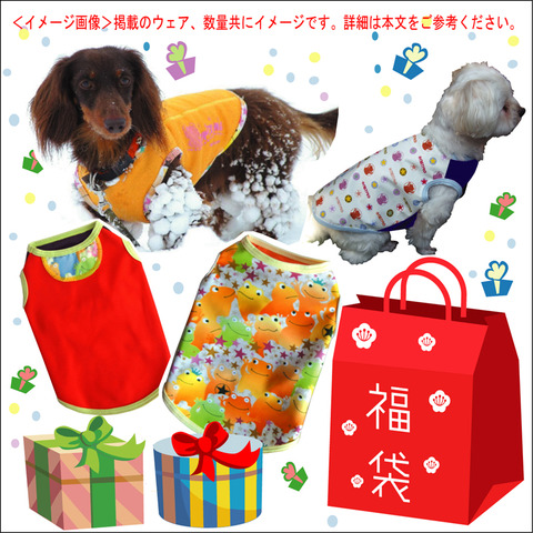 2017fukubukuro_image