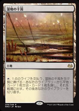 2湿地の干潟