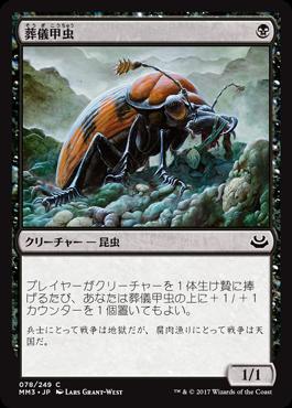 10葬儀甲虫